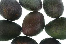 Whole Avocado Royalty Free Stock Photography