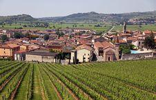 Free The Italian Town Of Soave Stock Photo - 14803310