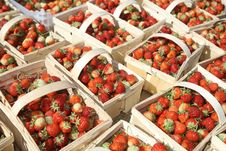 Strawberries In Baskets Stock Photos