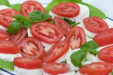 Free Fresh Salad Stock Photo - 14804990