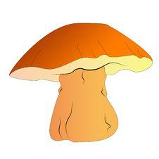 Free Mushroom Royalty Free Stock Image - 14806226
