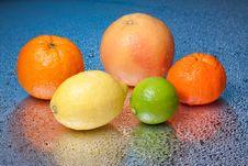 Free Citrus Royalty Free Stock Photos - 14807808