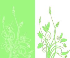 Free Abstract Double Foliage Vector Royalty Free Stock Photography - 14809597