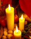 Free Christmas Still Life Stock Photography - 14812582