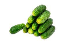 Free Green Cucumber Stock Photos - 14810203