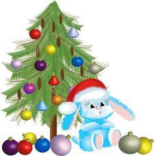 Santa-rabbit Royalty Free Stock Photo