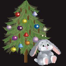 Fir-tree And Rabbit. Stock Photos