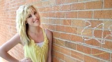 Free Girl Standing Next To Brick Wall Stock Image - 14811781