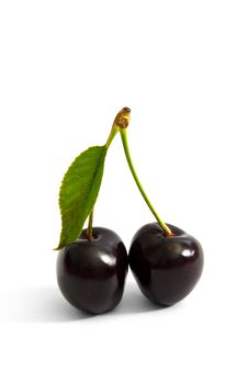Free Two Cherries Royalty Free Stock Photo - 14811895