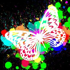 Free Butterfly From Color Splashes Stock Images - 14811944