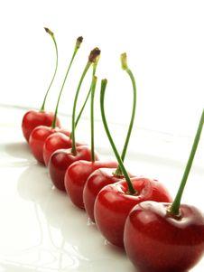 Free Cherries Royalty Free Stock Photos - 14812298