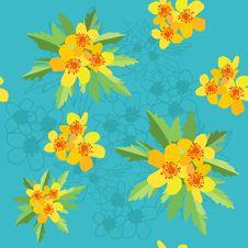 Free Ranunculus Acris Seamless Royalty Free Stock Image - 14812536