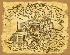 Harvesting - Vintage Drawing Stock Image