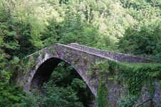 Free Medieval Bridge Royalty Free Stock Photo - 14812965