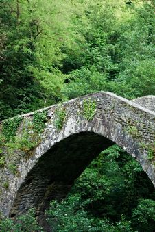 Free Medieval Bridge Royalty Free Stock Image - 14813326