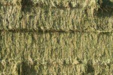 Free Hay Bales Stock Photography - 14814552