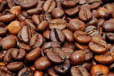 Free Coffee Beans Stock Image - 14814581