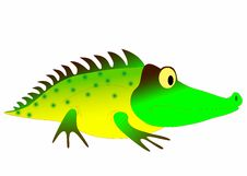 Free Crocodile Stock Photo - 14815620