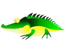Free Crocodile Stock Photography - 14815632
