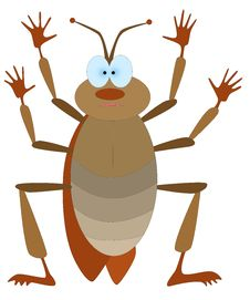 Free Cockroach Stock Image - 14816701