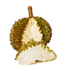 Durian. Giant Tropical Fruit. Stock Photography