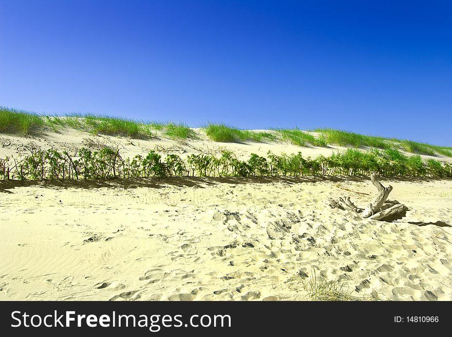 Dunes conceptual image.