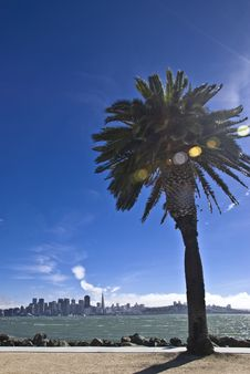 San Francisco From Treasure Island Stock Image