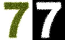 Number 7 Of The Grass With Alpha Channel Stock Images