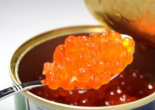 Free Red Caviar Royalty Free Stock Photo - 14838055