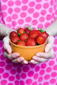 Free Strawberries In Bowl Stock Photos - 14839123