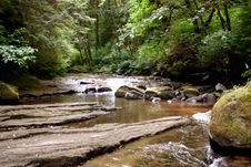Sweet Creek Falls Stock Image