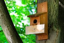 Free Birdhouse On A Tree In Forest Park On Spring Day, Hand Wood Shelter For Birds Royalty Free Stock Photos - 148317068