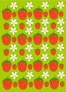Free Strawberry Garden Texture Royalty Free Stock Photography - 14841497