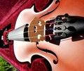 Free Violin Stock Photos - 14844023