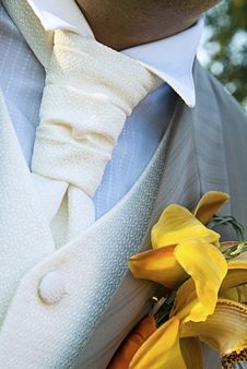 Free Man In Ceremonial Dress Elegant Stock Photography - 14841262