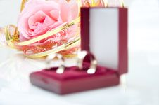 Free Rose And Wedding Rings Royalty Free Stock Photography - 14841607