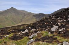 Free Burned Mountain, Kerry, Ireland Stock Image - 14841691