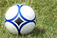 Free Soccer Ball On The Grass Royalty Free Stock Photos - 14842118