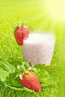 Free Strawberry Milkshake With Strwaberries Stock Photos - 14842373