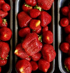 Free Fresh Country Strawberries Royalty Free Stock Images - 14843589