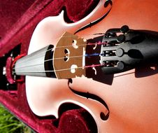 Free Violin Stock Photos - 14844023