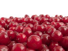 Free Red Cherry Stock Photo - 14846740