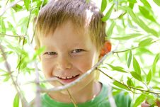 Free Portrait Of A Smiling Redhead Boy Stock Photos - 14848143