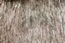 Free Old Wood Texture Stock Images - 14848224
