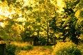 Free Autumn In Rural Area Stock Photo - 14857310