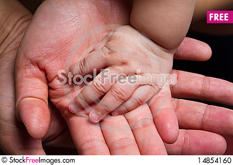 Free Hand Of Baby Stock Photo - 14854160