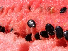 Fresh Melon Detail Royalty Free Stock Photos