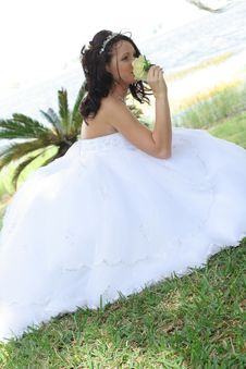 Free Beautiful Bride Smelling A Flower Stock Photos - 14852003