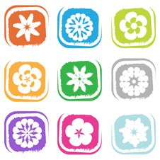 Flower Design Elements Royalty Free Stock Images