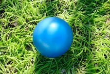 Dark Blue Children S Ball On A Grass Royalty Free Stock Images